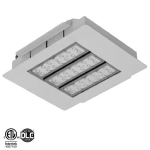 sc 1 st  Intelligent Lighting Solutions & LED Canopy Lights | Intelligent Lighting Solutions